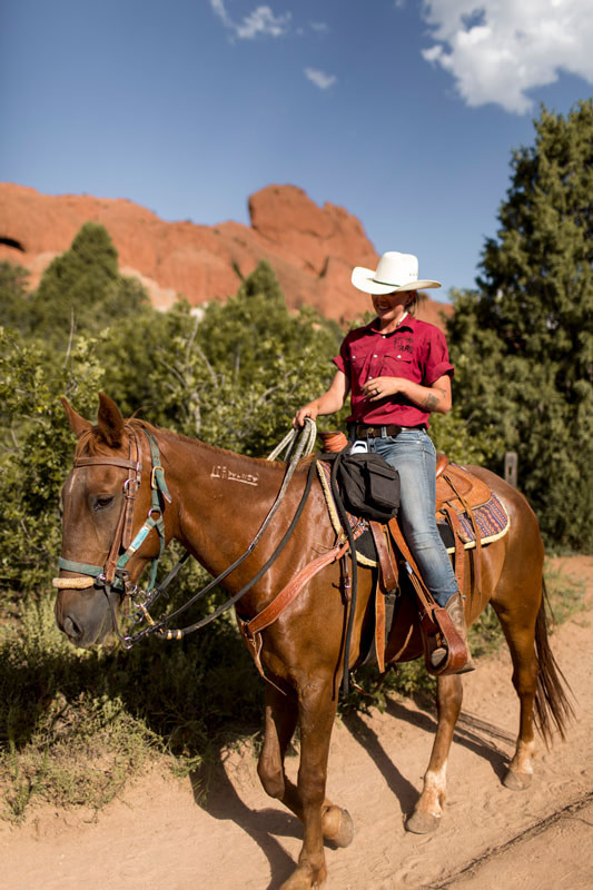 academy riding stables guide