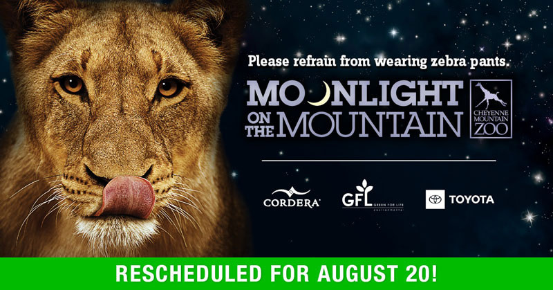cheyenne mountain zoo moonlight on the mountain 2020 graphic