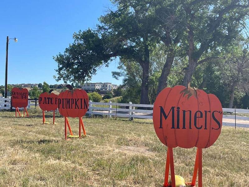 Miner's Pumpkin Patch