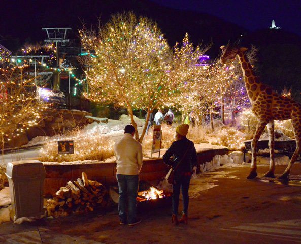 Holiday Shopping Cheyenne Mountain Zoo