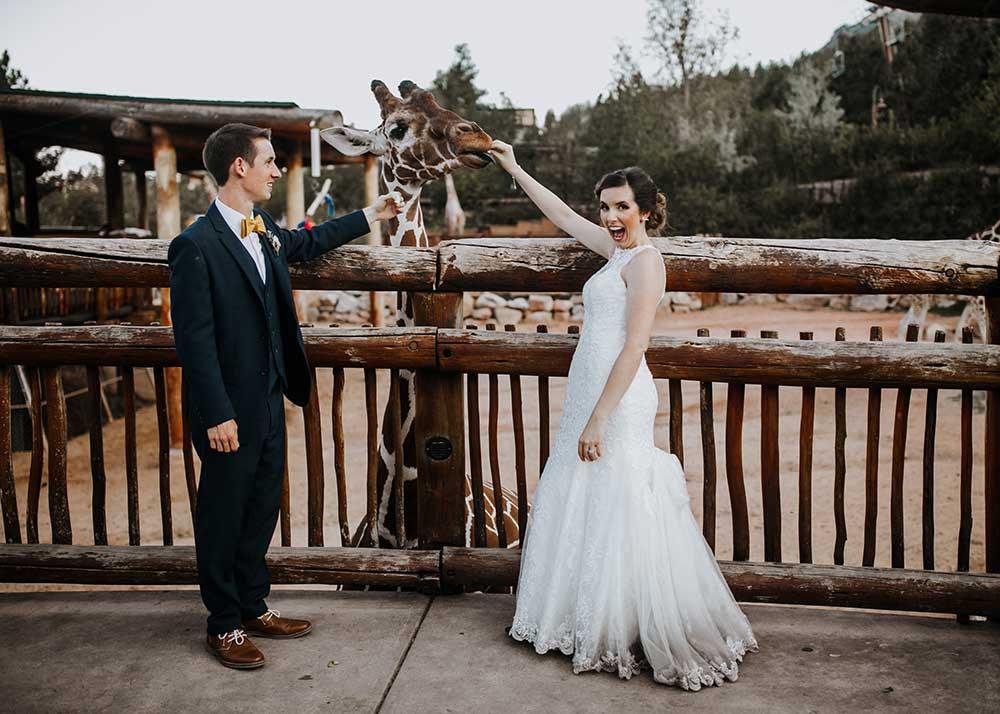 Cheyenne Mountain Zoo wedding photo with giraffe