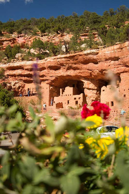Manitou Cliff Dwellings flowers
